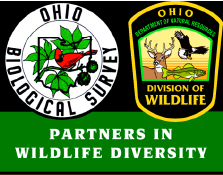 Ohio Biological Survey and Ohio Division of Wildlife: Partners in Wildlife Diversity